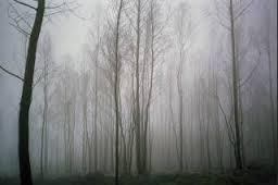 imagesevents9164winterwoods-jpg.jpe