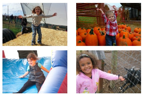 imagesevents10293FallFestival-png.png