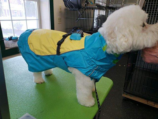 Two-tone Raincoat