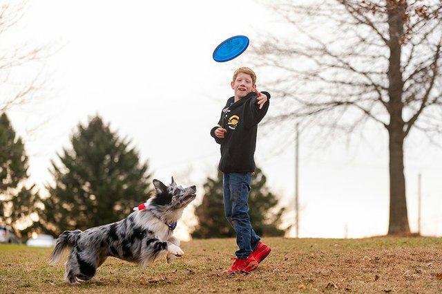 Frisbee Dog-4.jpg