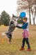 Frisbee Dog-2.jpg