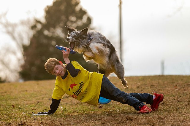 Frisbee Dog-9.jpg