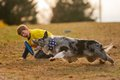 Frisbee Dog-8.jpg