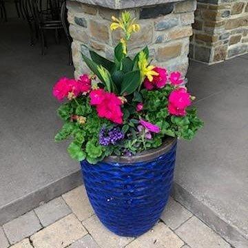 planter2021-Spayds.jpg
