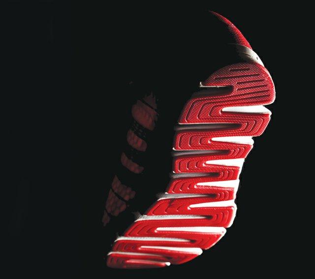 sneaker.jpg.jpe