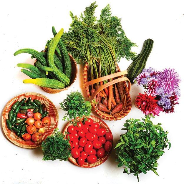vegetables.jpg.jpe