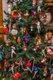 12317-Dec14LISJS5_2756.jpg.jpe
