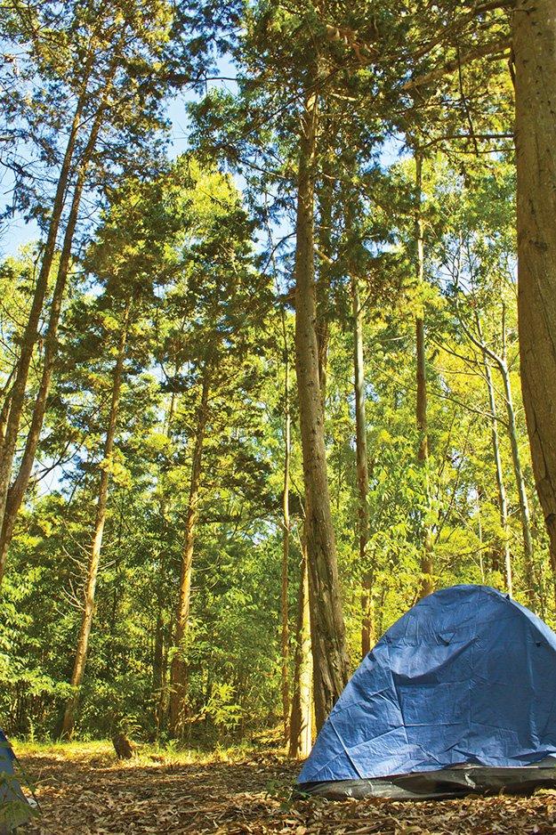 CampGuide.jpg.jpe