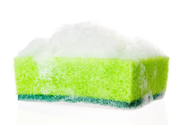 sponge.jpg.jpe