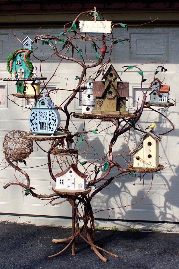16583-Birdhouse_galleryIMG_7252.jpeg.jpe
