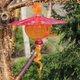 16585-Birdhouse_galleryIMG_7253.jpeg.jpe